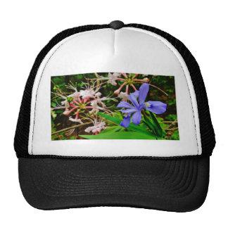 Crested Dwarf Iris Cap