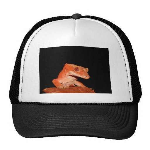 crested gecko trucker hat