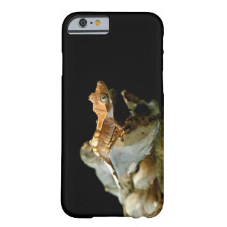 Crested Gecko Phone Case