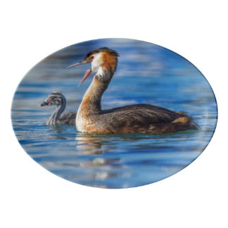 Crested grebe, podiceps cristatus, duck and baby porcelain serving platter