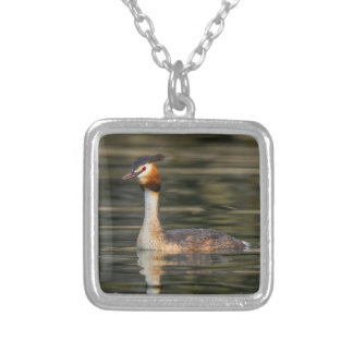 Crested grebe, podiceps cristatus, duck silver plated necklace