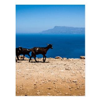 Crete 8 postcard