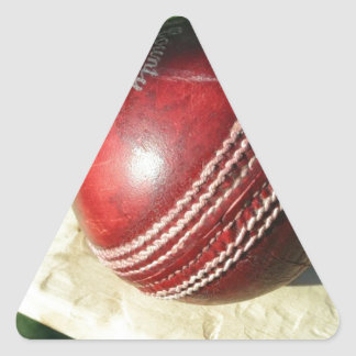 cricket-ball-and-bat.jpg triangle sticker
