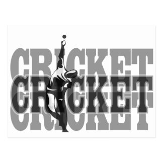 Cricket Bowler Postcard
