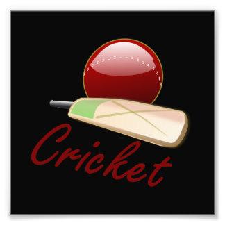 Cricket Photo Art