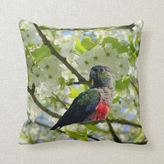 Crimson Bellied Parakeet Cushion