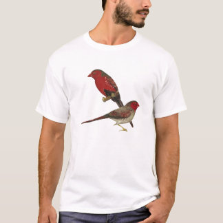 Crimson Finch (black-bellied) Pair T-Shirt