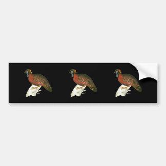Crimson Horned Pheasant Bumper Sticker