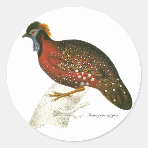 Crimson Horned Pheasant Stickers