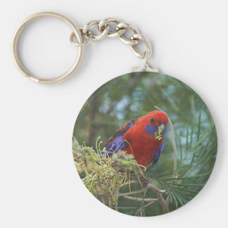 Crimson Rosella Key Ring