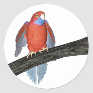 Crimson Rosella Parrot Round Sticker