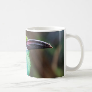 Crimson-rumped Toucanet Coffee Mug