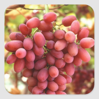 Crimson Seedless Grapes Square Sticker