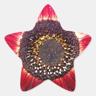 Crimson Sunflower Star Sticker