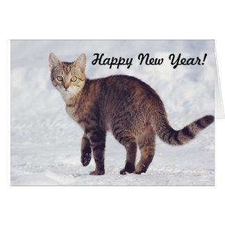 Crisp Snow Cat | Happy New Year Card
