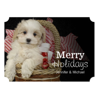 Cristmas Malti-poo puppy sitting in basket 13 Cm X 18 Cm Invitation Card