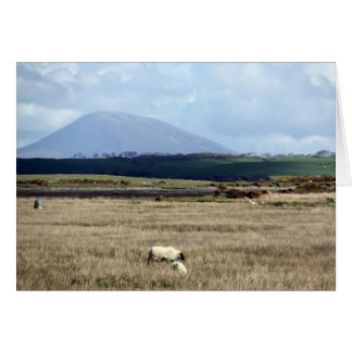 Croagh Patrick watches over the flock Card