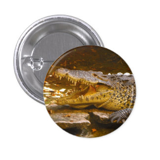 Crocodile Button