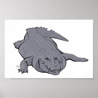Crocodile Illustration Poster