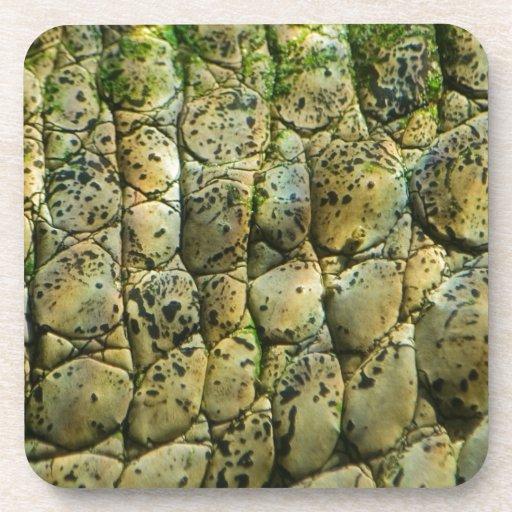 Crocodile Print Beverage Coasters