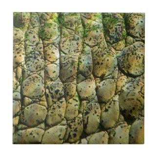 Crocodile Print Small Square Tile