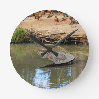 CROCODILE QUEENSLAND AUSTRALIA ROUND CLOCK