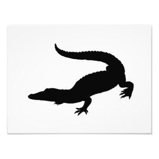 Crocodile Silhouette Photo Print
