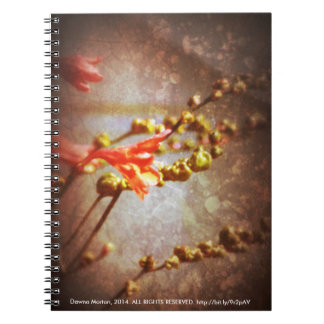 crocosmia flowers note books