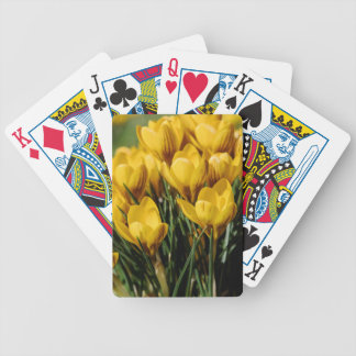 crocus bicycle playing cards
