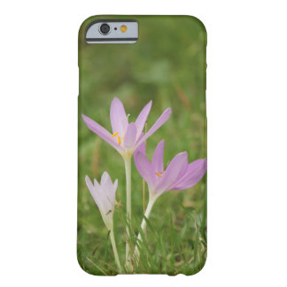 Crocus flower barely there iPhone 6 case