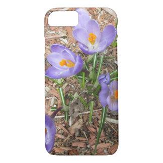 Crocus Flower in Bloom iPhone 7 Case