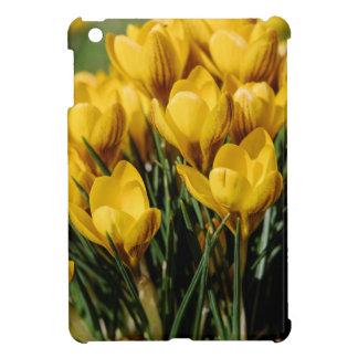 crocus iPad mini case