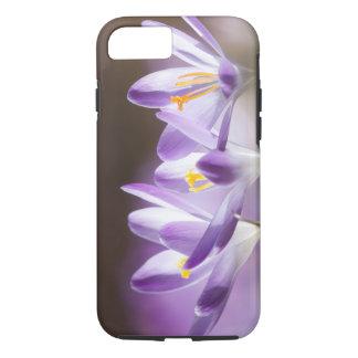 crocus iPhone 7 case