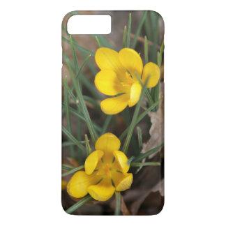 Crocus, iPhone 7 Plus Case. iPhone 7 Plus Case