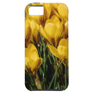 crocus tough iPhone 5 case