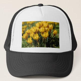 crocus trucker hat