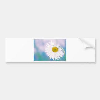 Crooked Daisy Bumper Sticker