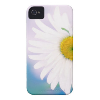 Crooked Daisy Case-Mate iPhone 4 Cases