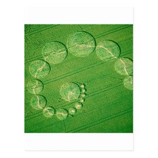 Crop Circle Seventeen Moons Wiltshire Postcard