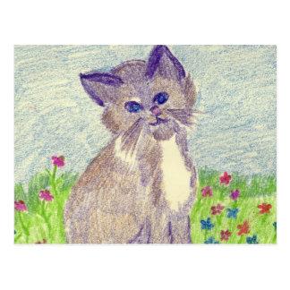 cropped kitten postcard