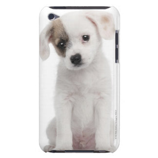 Cross breed puppy (2 months old) barely there iPod cover