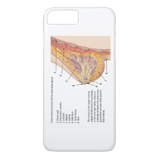 Cross Section Diagram of the Human Mammary Gland iPhone 7 Plus Case