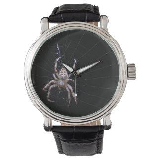 Cross Spider ~ watch