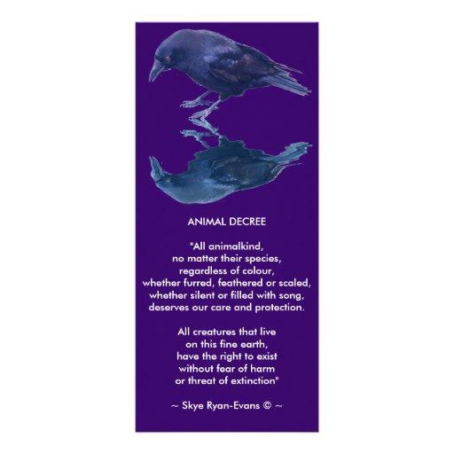 CROW Collection Rack Card Design