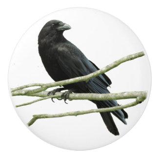 Crow Drawer Knob