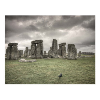 Crow in front of Stonehenge, England Postcard
