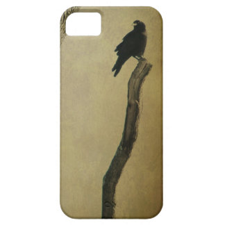 Crow In Nature iPhone 5 Cases