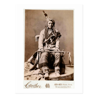 Crow Indian 1880 Postcard