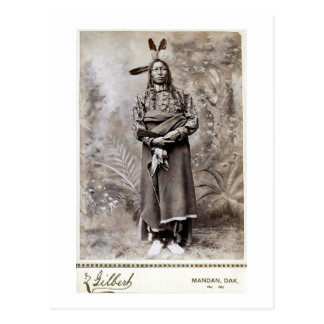 Crow King 1880 Postcard