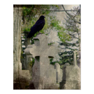 Crow Owns It Poster